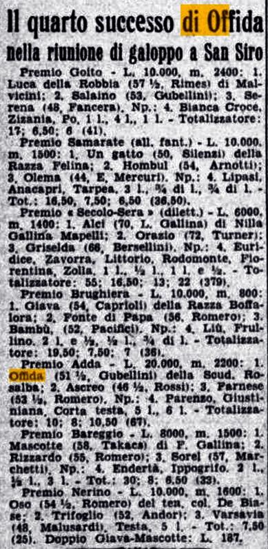 cavallo offida 6 23 giugno 1939